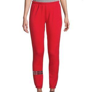 NWT Wildfox Metallic Striped Sweatpants